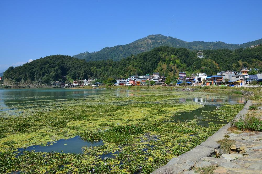 01-phewa-tal-pokhara