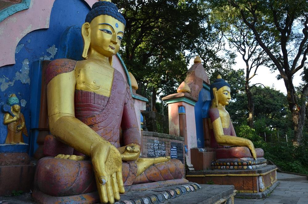 14-buddhas