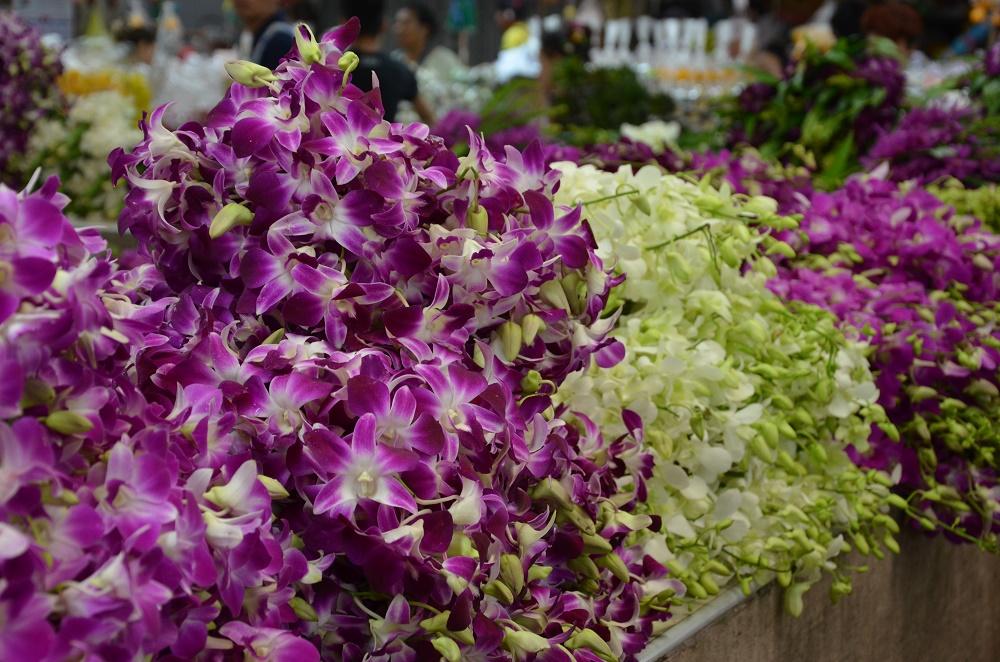 17 - Marché aux fleurs