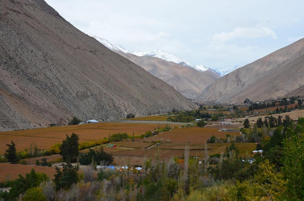 09 - Pisco Elqui