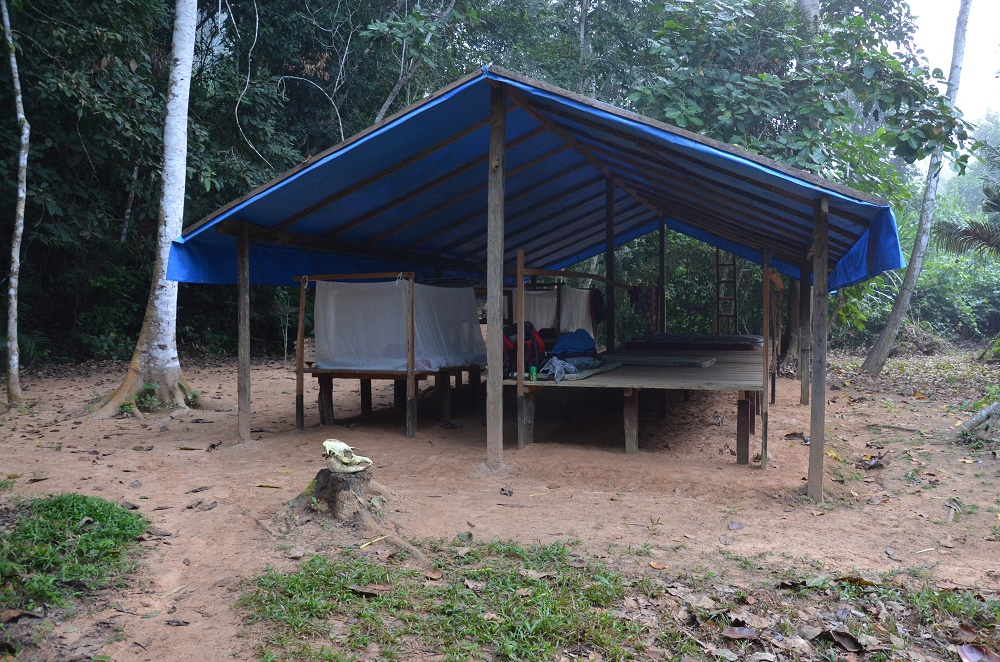 25 - le campement en pleine jungle