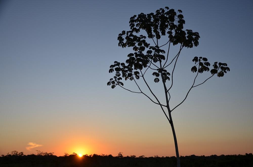 41 - coucher de soleil