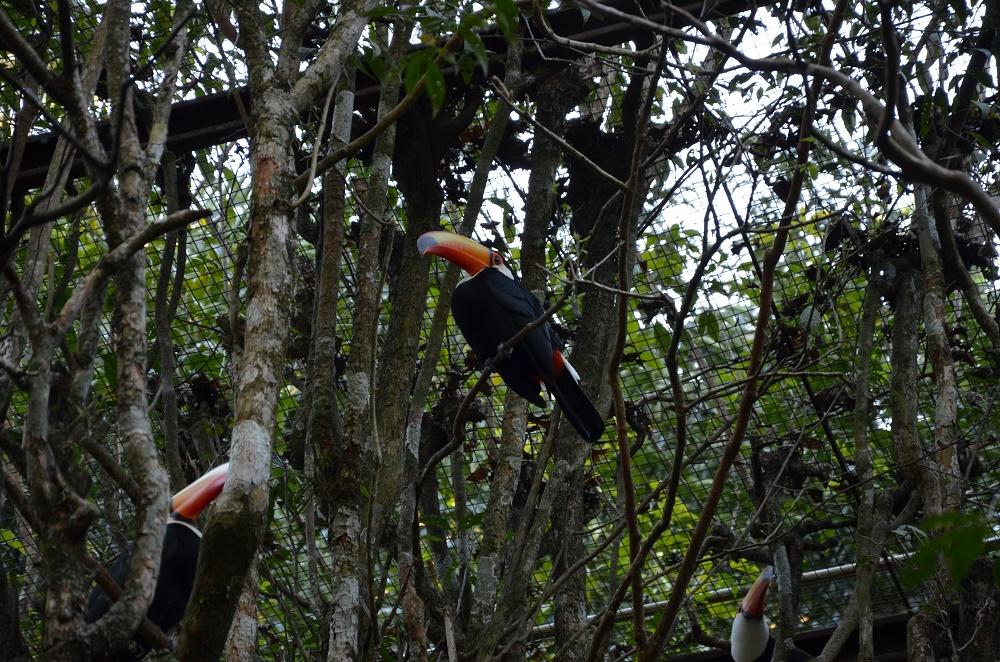 26 - Parque das Aves